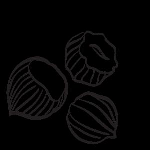 Certified Organic Hazelnuts