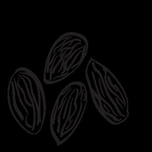 Certified Organic Almonds
